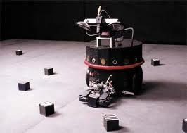 A Darwin robot